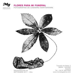 Casimiro Martinferre. Flores para mi Funeral