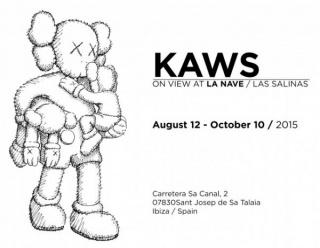 Kaws Lio