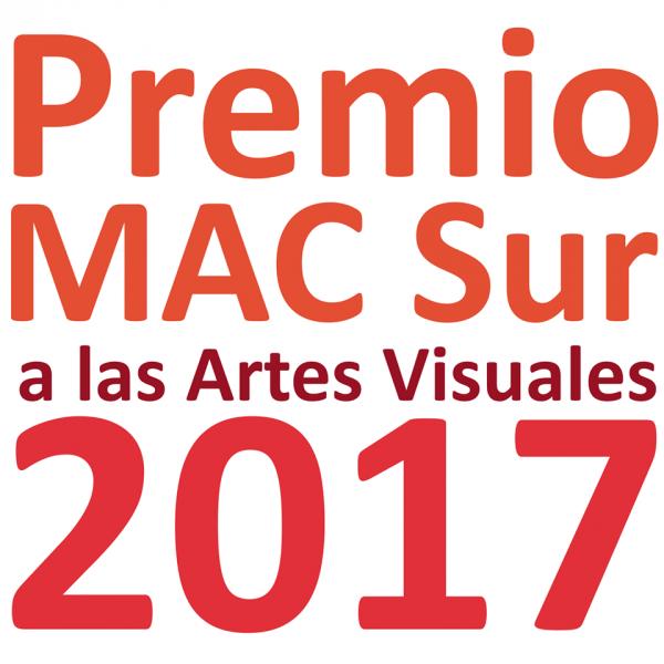 Premio MACSUR a las Artes Visuales 2017