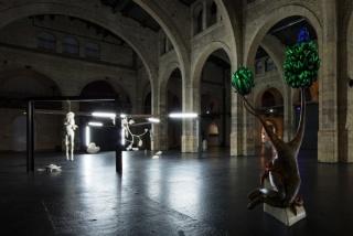 Naufus Ramírez-Figueroa, Linnæus in Tenebris, 2017 View of the site-specific installation at CAPC musée d'art contemporain de Bordeaux Photograph: Arthur Péquin, 2017