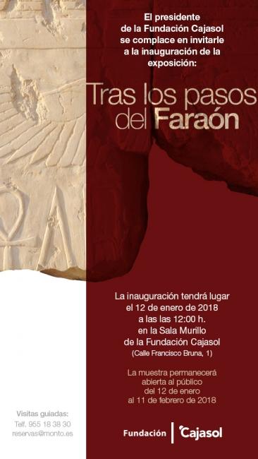 Tras los pasos del Faraón