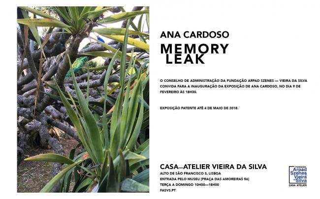 Ana Cardoso. Memory Leak