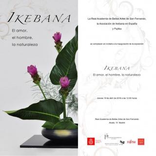 Ikebana. El amor, el hombre, la naturaleza