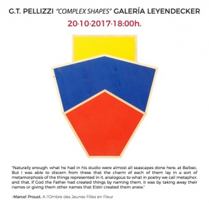 G.T. Pellizzi, Complex Shapes