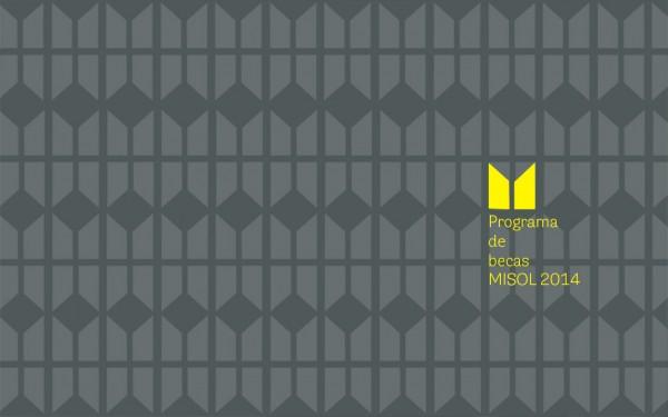 Programa de Becas MISOL 2014