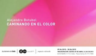 Alejandro botubol, Caminando en el color