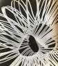 Jorge Pereira, Fotograma, 1964. Photogram, 11.3 x 12.9 inches. Imagen cortesía Sicardi Gallery