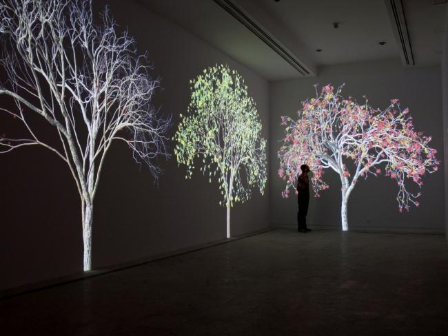 Jennifer Steinkamp – Cortesía de Madrid Design Festival