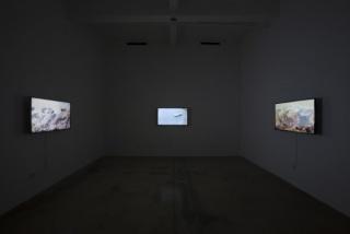 Carlos Martiel, Aislado, Installation view, Steve Turner, September 2015