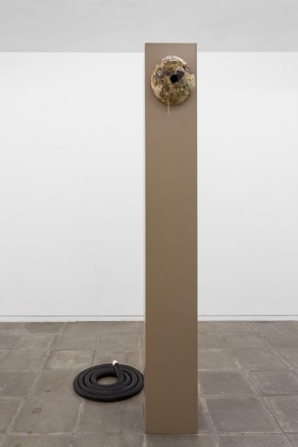 Pedro Wirz | Dobrar de espinho, anzol | 2017 installation view at Múrias Centeno, Porto | photo credits: Bruno Lopes