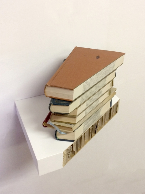 Martin DernerMartin Derner_golden cut_from cycle, the housing situation_2015_livros e prateleira de madeira_24,5x24,5x38cm