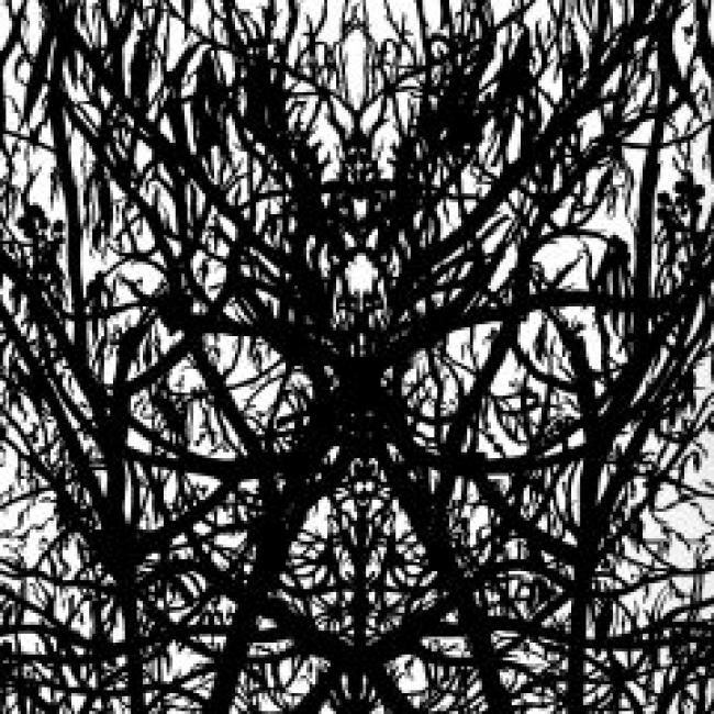 Gerardo Monsiváis, Bosque de Rorschach, 2009, tinta china sobre papel, 38x28 – Cortesía del Museo de Arte Carrillo Gil