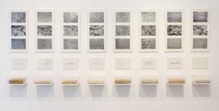 Marla Jacarilla, instalación `El fin y la persistencia´, 2014
