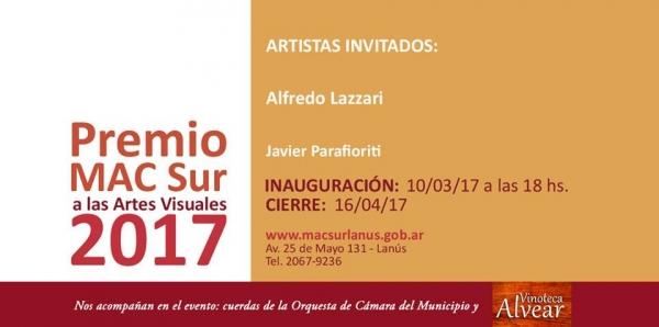 PREMIO MAC SUR A LAS ARTES VISUALES 2017