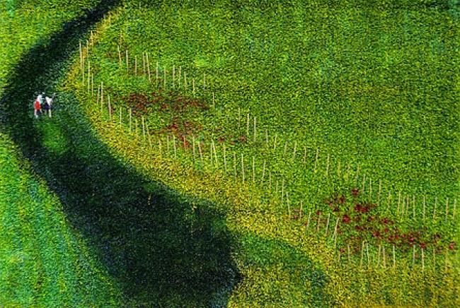 Olga Andrino, Cuando al fin las luce..., 137x200 cm. Mixta sobre césped artificial – Cortesía de la Galería Materna y Herencia