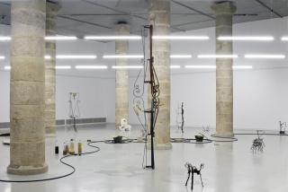 Humus Recalls Curvatures, 2017, Centre d'Art la Panera, Lleida