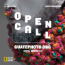 Open Call Guatephoto 15