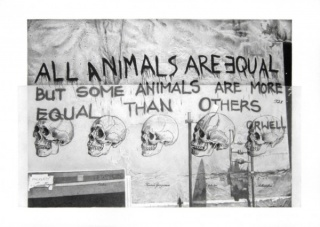 Ernesto Casero, All animals are equal