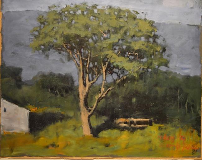 Armando Morales Boceto (Tree), Oleo sobre papel 60 x 90 cm. Cortesía de Rojas-Ford