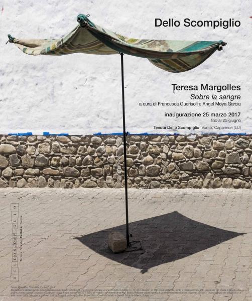 Teresa Margolles. Sobre la sangre