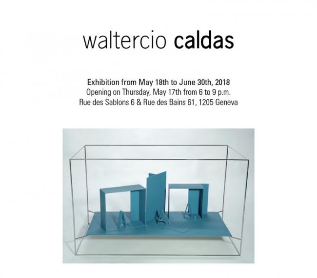 Waltercio Caldas