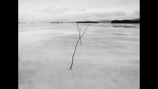 Ine?s Garci?a © Winterreise — Cortesía de Curtas Vila do Conde