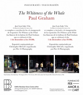 Paul Graham. The Whiteness of the Whale