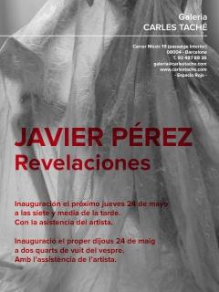 Javier Pérez. Revelaciones