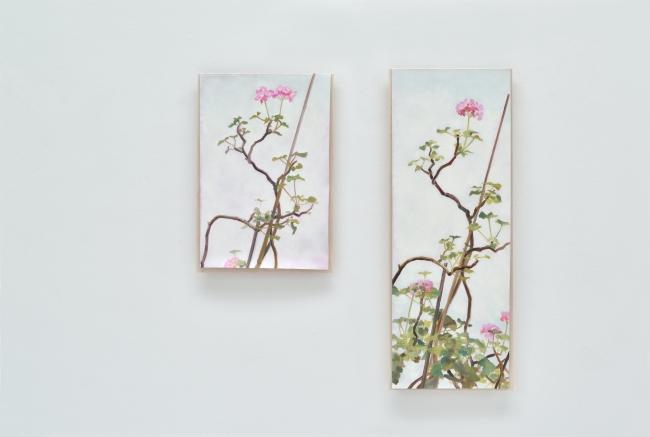 Caroline von Grone, Serie Geranium, 2018. Óleo sobre lienzo — Cortesía de Guillermina Caicoya art projects