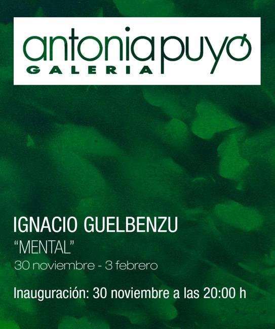 Ignacio Guelbenzu. Mental