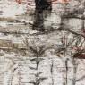 Claudia Anselmi, Fragmento en base a fotografía de Eduardo Baldizán