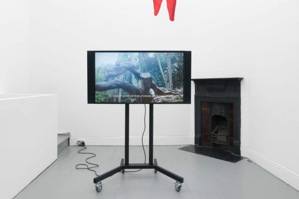 Installation view, Pedro Barateiro. Courtesy of Tenderpixel
