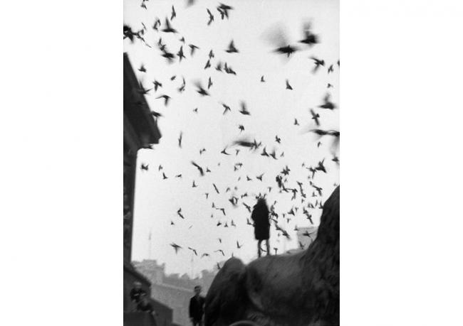 Londres / Plaza Trafalgar 1958-1959 / © Sergio Larrain / Magnum Photos. Cortesía del CCB   El fotógrafo chileno Sergio Larraín cierra el año expositivo en Argentina