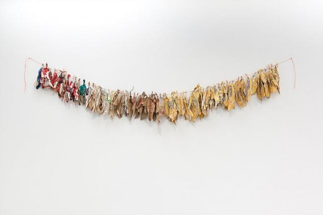 ''Plantas poderosas'' de Reyes Santiago Rojas. Cortesía de la artista | Las curadoras colombianas Paola Peña y Camila Téllez seleccionan 6 artistas para ARTEINFORMADO