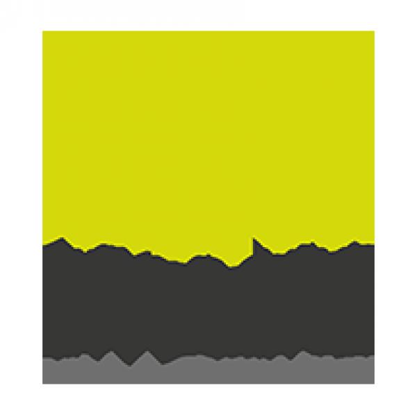 Divulgar