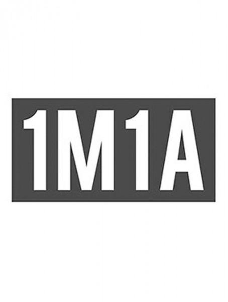 1 MES 1ARTISTA (1M1A)