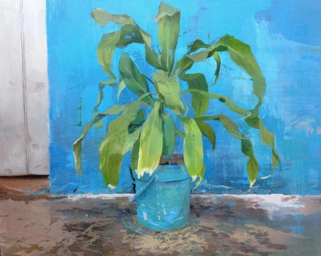 Antonio Barahona - La maceta azul, 2016
