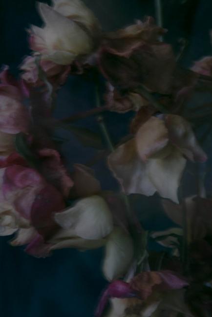 """Las Platenses"", serie. 70 x 90 cm ."